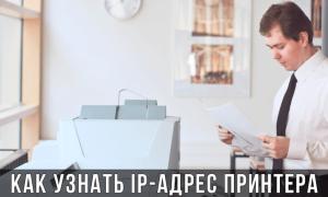Как узнать IP адрес сетевого принтера: HP, Kyocera, Epson, Canon