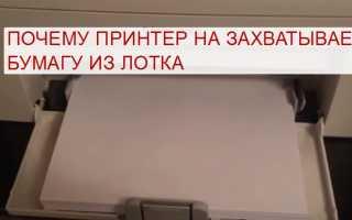 Принтер не захватывает бумагу: что делать и почему