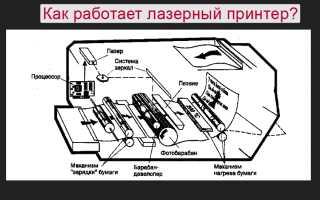 Принцип работы лазерного принтера от заряда до закрепления
